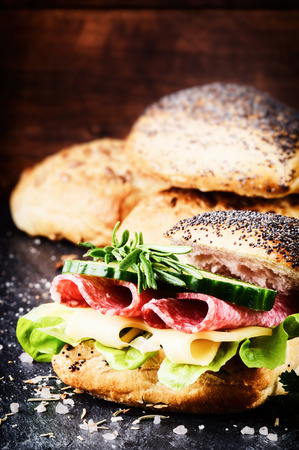 Fresh sandwich with salami and cheese on dark background photo