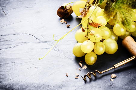 des vins: Bunch of white grape in rustic setting. Wine making concept Stock Photo