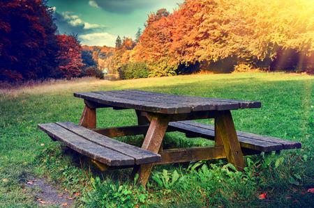 banc de parc: Seul lieu de pique-nique dans la forêt d'automne au jour ensoleillé