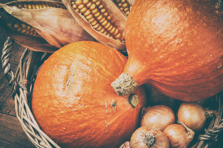 Autumn harvest setting with pumpkins and corn in rustic basket photo