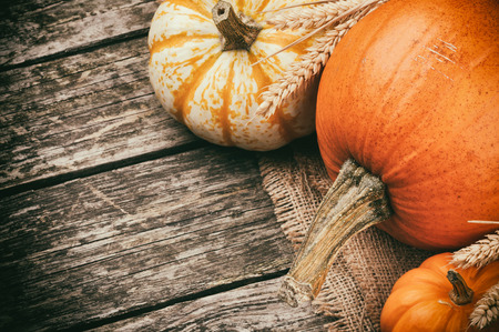 Autumn still-life with pumpkins on wooden background photo