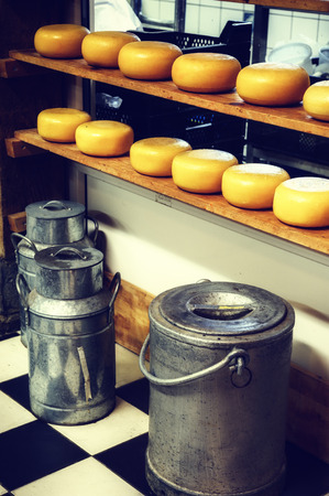 factory farm: Cheese rounds and milk cans in small dairy factory. Holland Stock Photo