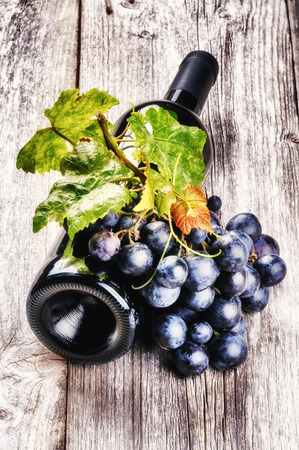 Bottle of red wine with fresh grape and grapevine on wooden background photo