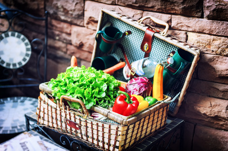 Old picninc basket with fresh vegetables used as outdoor decoration photo