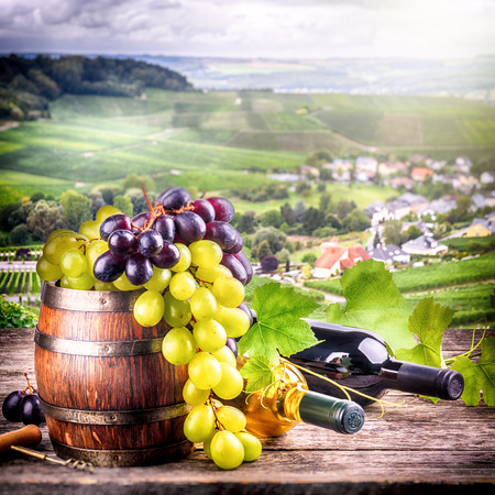 Bottles of red and white wine with fresh grape with vineyard on the background