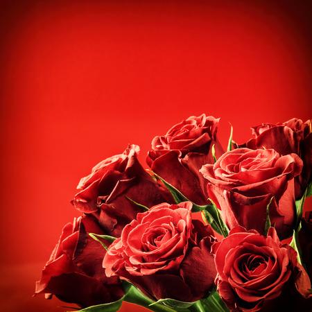 浪漫: 一束紅玫瑰。情人節的概念