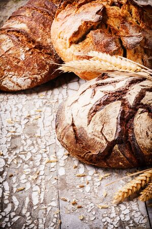 Selection of freshly baked bread in rustic setting with copyspace photo