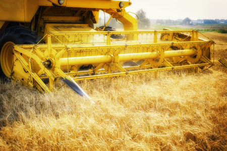 yield: Combine harvester working at wheat field. Closeup shot