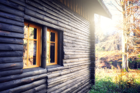 Wooden cabin in sunny autumn forest
