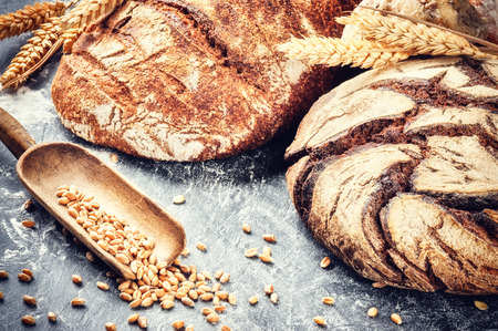 grain: Freshly baked bread in rustic setting with copyspace