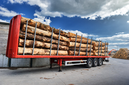 lumber industry: Trucks charged with wood logs waiting for delivery. Industrial concept Stock Photo