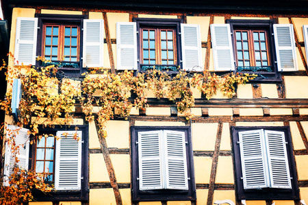 timber frame: Details of traditional timber frame house with grapevine. Alsace, France Stock Photo