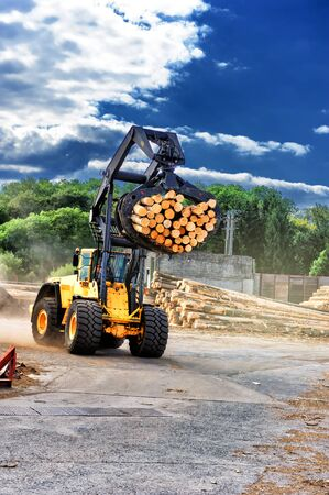 hauling: Forklift truck hauling logs at sawmill. Industrial concept with copyspace