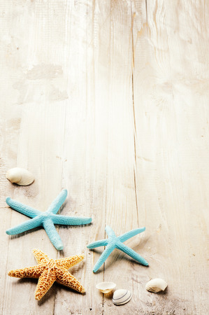 Summer setting with sea shells on old wooden background. Copy space