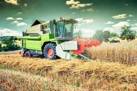 cosechadora: Cosechadora trabajan en el campo de trigo. Foto de archivo