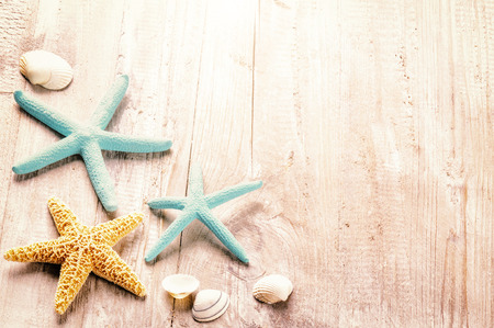 star border: Summer setting with sea shells on old wooden background