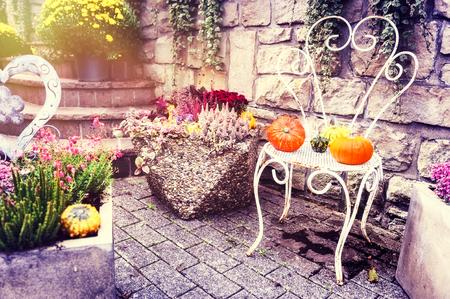 Herfst outdoor decoratie met kleurrijke pompoenen. Kopieer de ruimte Stockfoto