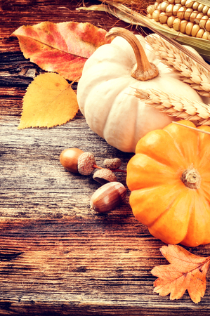 acorn: Autumn still-life with pumpkins and acorns on wooden background Stock Photo