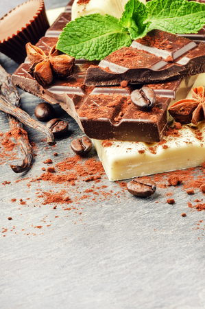 pralines: Assortment of fine chocolates and pralines with fresh mint and vanilla