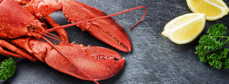 Fine selection of crustacean for dinner. Steamed lobster with lemon on dark background