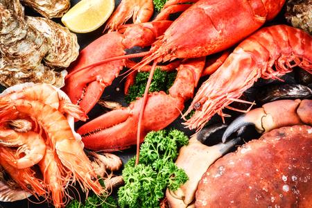 garra: Buena selección de crustáceos para la cena. Langosta, cangrejo y camarones jumbo y ostras en fondo oscuro
