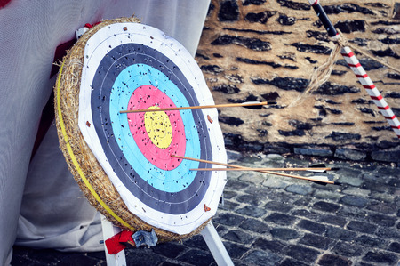 outdoor: Target with arrows in outdoor setting