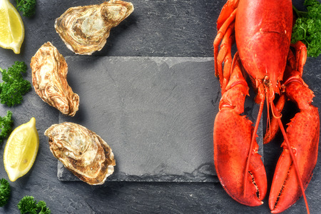 crustacean: Fine selection of crustacean for dinner. Steamed lobster and oysters on dark background