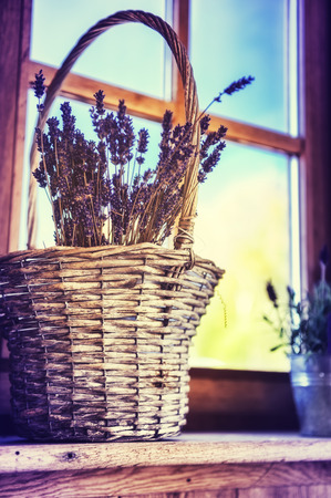 old windows: Bunch of freshly cut lavender in a basket. Home decoration concept Stock Photo