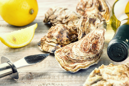 Fresh oysters with white wine bottle. Food background Standard-Bild
