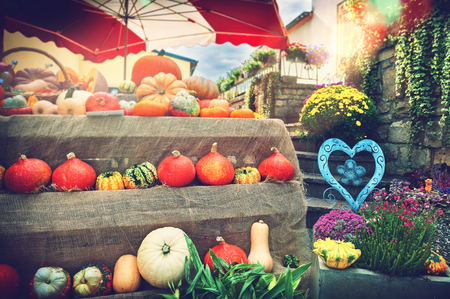 Fresh pumpkins and flowers at local farmers market. Fall background Stock Photo