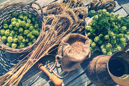 Rustic setting with beer pitcher and fresh hops. Food and beverage background