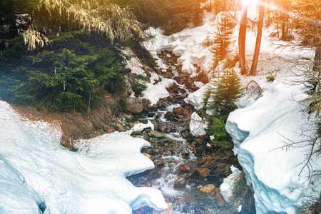 Winter landscape with forest stream. Snowy nature background Stock Photo