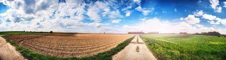 Panoramic agricultural landscape with plowed field. Summer nature background