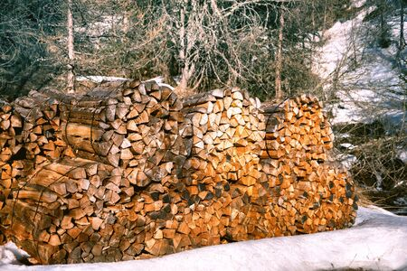 Winter forest landscape with log stacks(firewood)