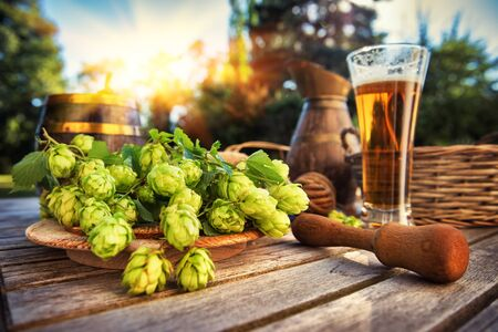 Fresh cold beer glass in rustic setting with fresh hops Stock Photo