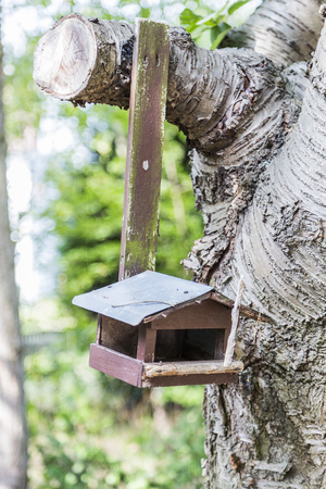 Old wooden birdhouse nailed to tree