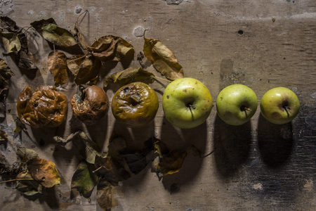 Rotten and fresh apple on background of wooden plank