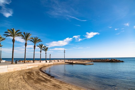 Sunny beach, promenade with palm trees in Torrevieja, Spain