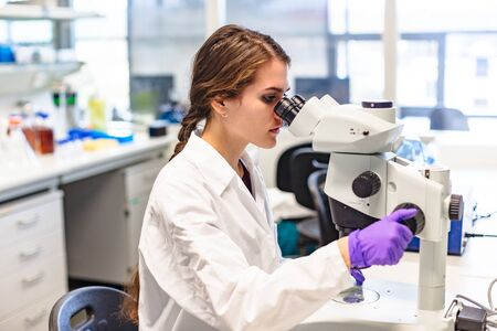 Scientist conducts study of biological material in lab