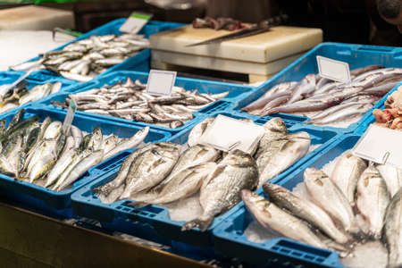 Different sorts of fresh fish on ice on counter at fish market in Barcelona