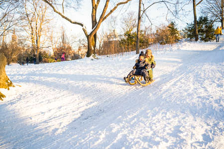 Two little afro-american or latin brothers in warm winter clothes sled down the snowy mountain in park or forest on sunny christmas day. Having fun, excited, laughing and smiling. Childhood, holidays Zdjęcie Seryjne