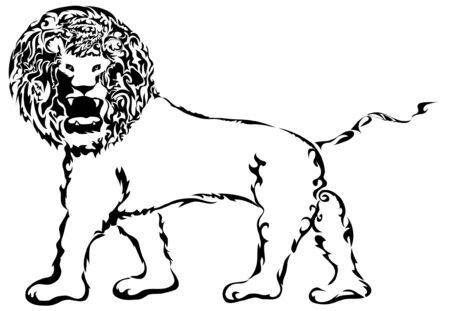 Ein Stammes-L�we ??mit einem einsch�chternden Look.