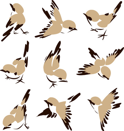 contorno: Ilustraci�n de aves poco  Vectores