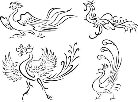 ave fenix: Ilustraci�n de ave tribales