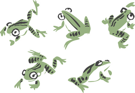 frog illustration Vector