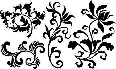 Conjunto de hojas de plantas  Foto de archivo - 7796733