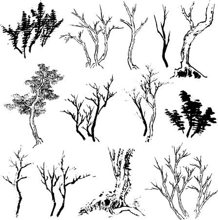 tree set design Vector