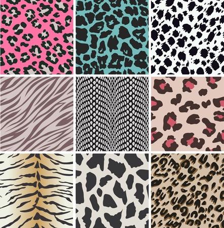 animal print: animales texturas de la piel Vectores