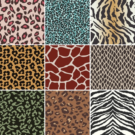 leopard: seamless animal skin swatch