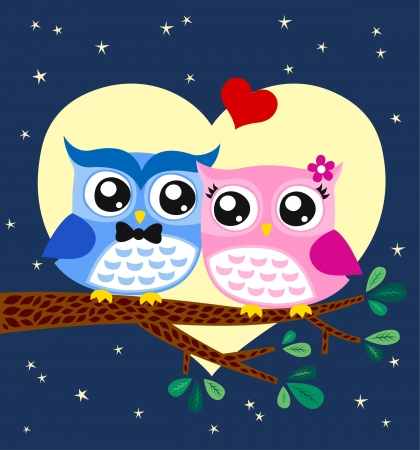 owl couple illustration  Vector
